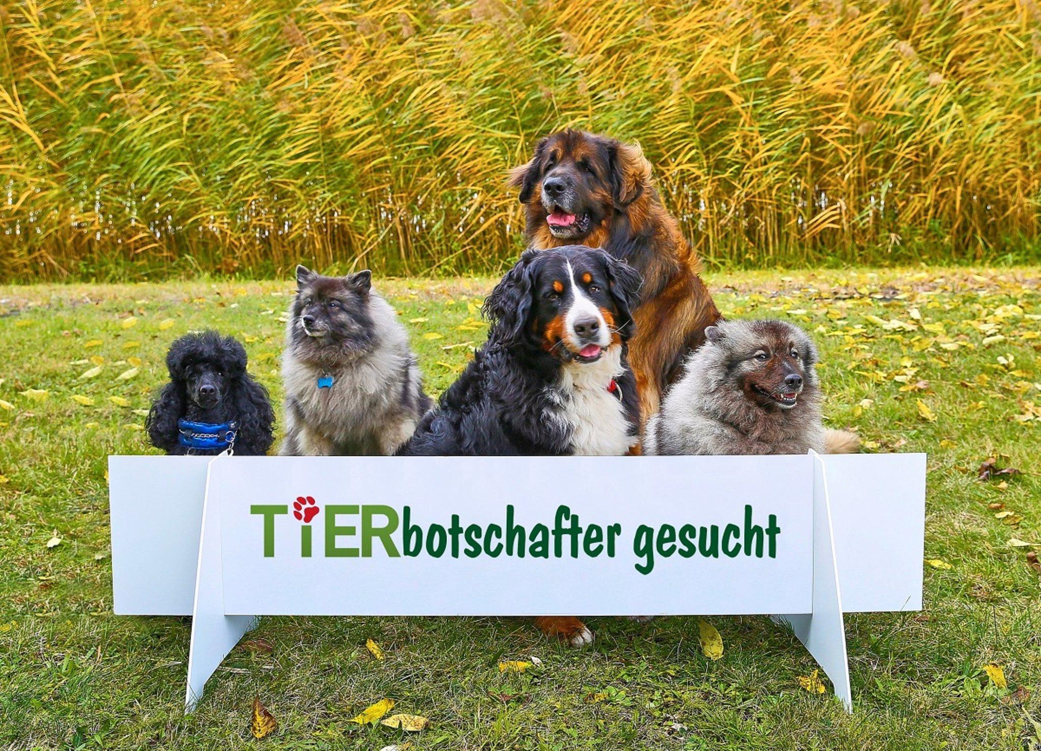 Karlsruhe Zoo Preis